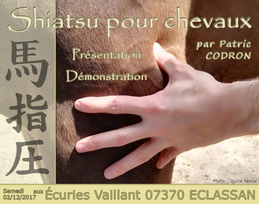 Image présentation Shiatsu - Écuries Vaillant