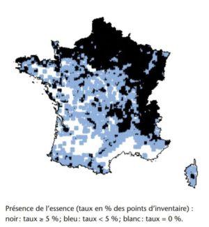 Répartition de l'érable sycomore en France